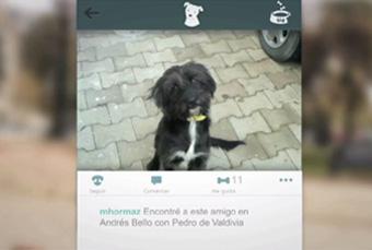Una App para dogfans | WOF